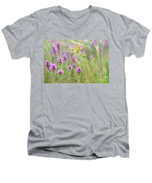Fairing Of Spring Men's V-Neck T-Shirt