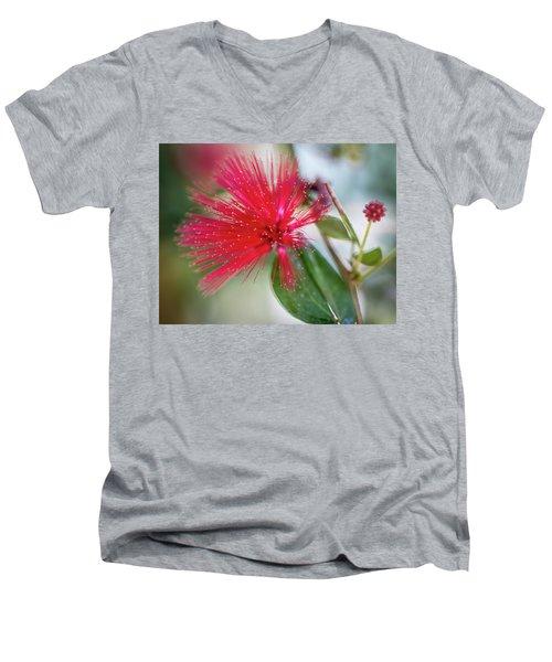 Fairy Duster Men's V-Neck T-Shirt