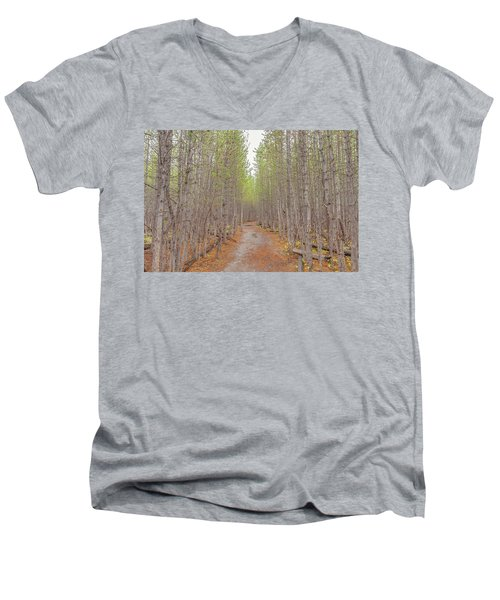 Fall Aspen Trail  Men's V-Neck T-Shirt