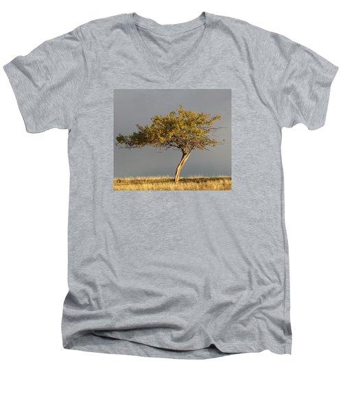 Fall At The Crabapple Tree Men's V-Neck T-Shirt