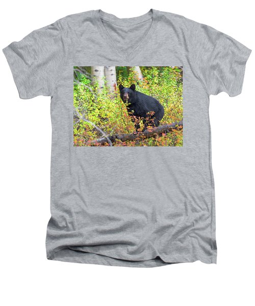 Fall Bear Men's V-Neck T-Shirt by Scott Warner