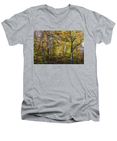 Fall Colors Of Rock Creek Park Men's V-Neck T-Shirt