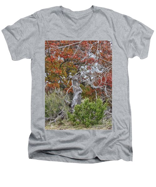 Fall Colors Once Again Men's V-Neck T-Shirt