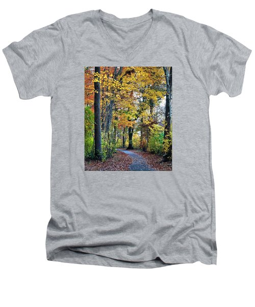 Fall Foliage Men's V-Neck T-Shirt by Mikki Cucuzzo