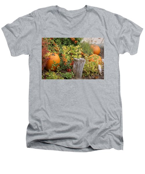 Men's V-Neck T-Shirt featuring the photograph Fall Garden by Cynthia Powell
