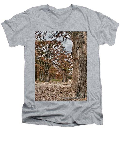 Fall In Texas  Men's V-Neck T-Shirt