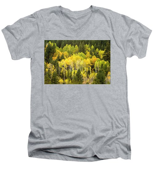 Fall In The Sierras Men's V-Neck T-Shirt