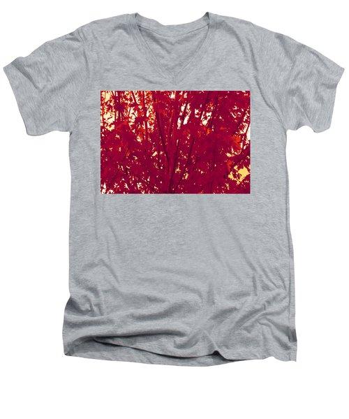 Fall Leaves #2 Men's V-Neck T-Shirt