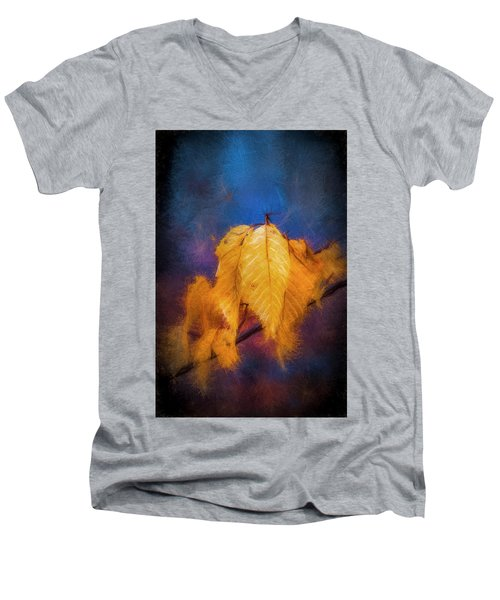 Fall Leaves Men's V-Neck T-Shirt