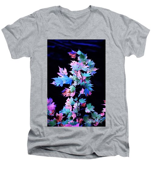 Fall Leaves1 Men's V-Neck T-Shirt