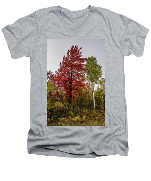 Men's V-Neck T-Shirt featuring the photograph Fall Maple by Paul Freidlund