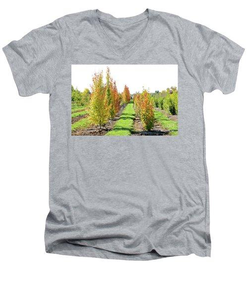 Fall On The Tree Farm Men's V-Neck T-Shirt