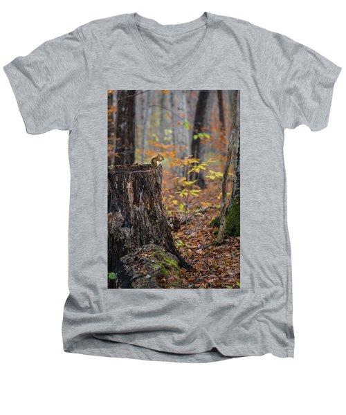 Fall Scene Men's V-Neck T-Shirt