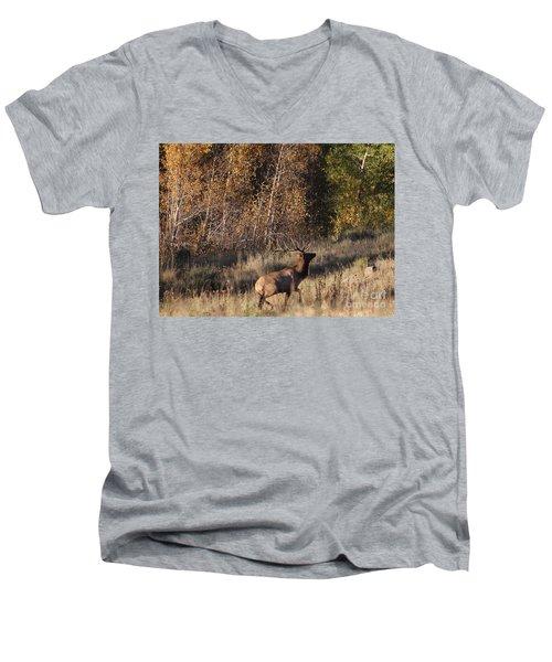 Fall Sunset Satellite Bull Elk II Men's V-Neck T-Shirt