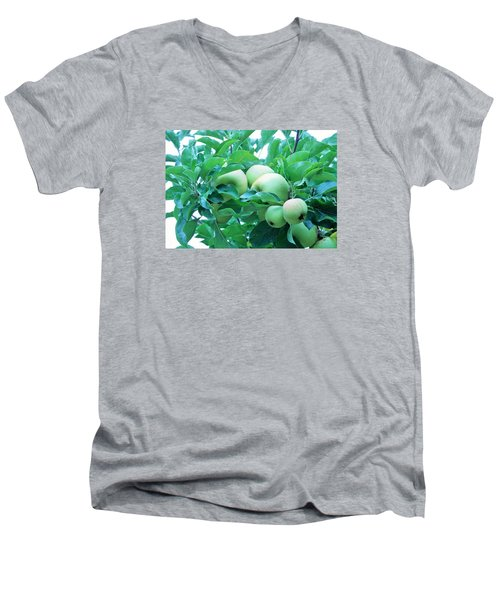 Fall's Bounty Men's V-Neck T-Shirt
