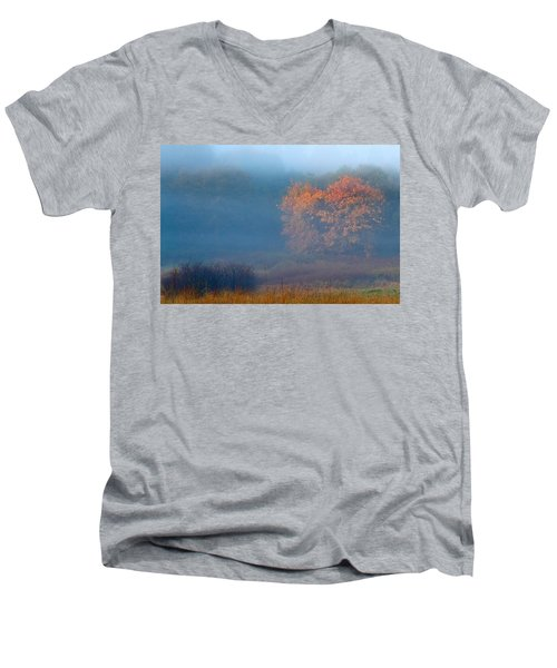 Falltime In The Meadow Men's V-Neck T-Shirt
