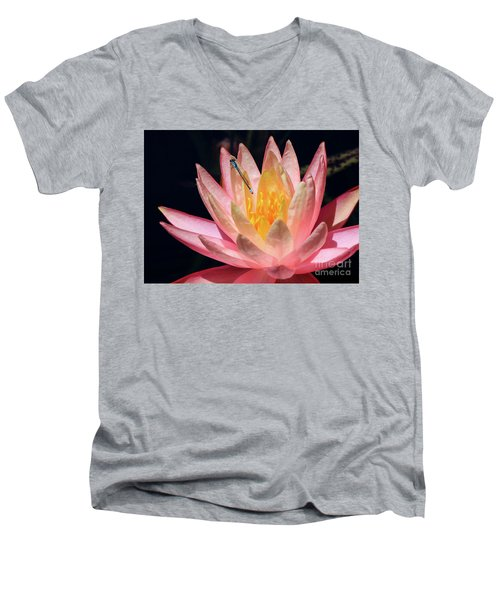 Familiar Bluet Damselfly And Lotus 2 Men's V-Neck T-Shirt