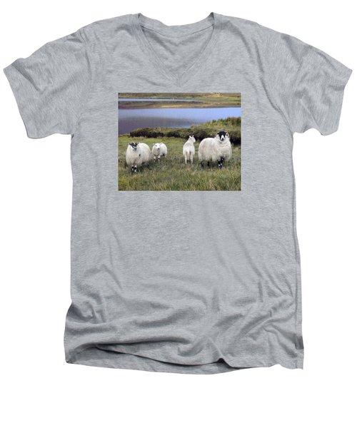 Family Of Sheep Men's V-Neck T-Shirt