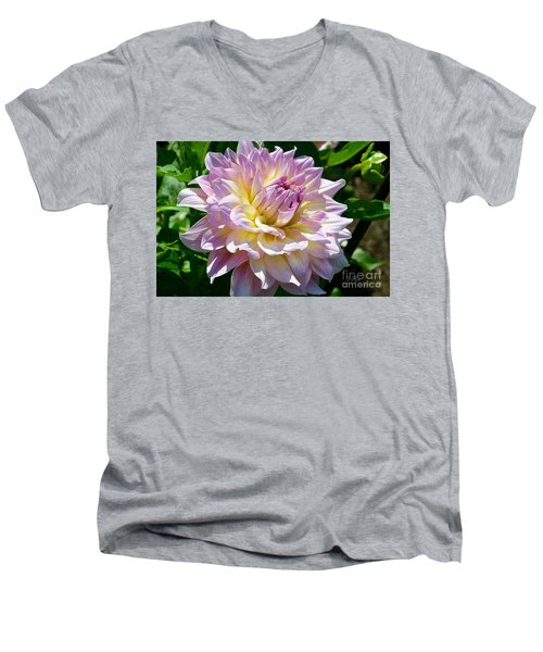 Fancy Dahlia In Pinks Men's V-Neck T-Shirt