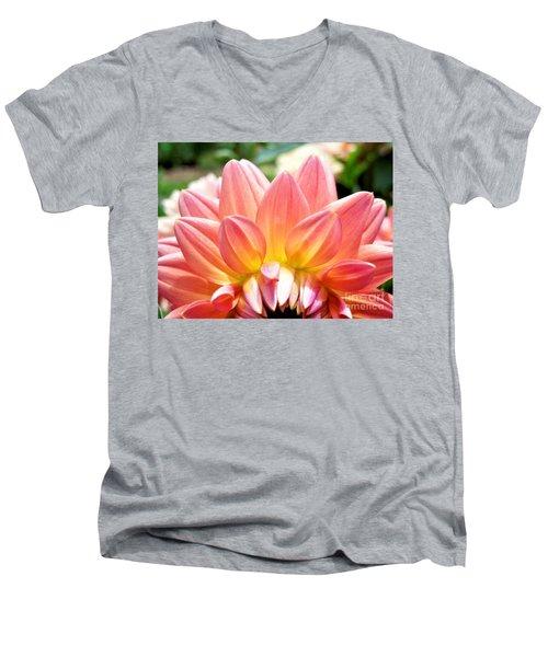 Fanned Out Petals Men's V-Neck T-Shirt