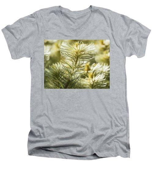 Featherheads Men's V-Neck T-Shirt