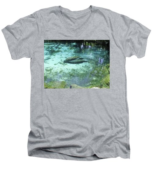Feeding Her Calf Men's V-Neck T-Shirt