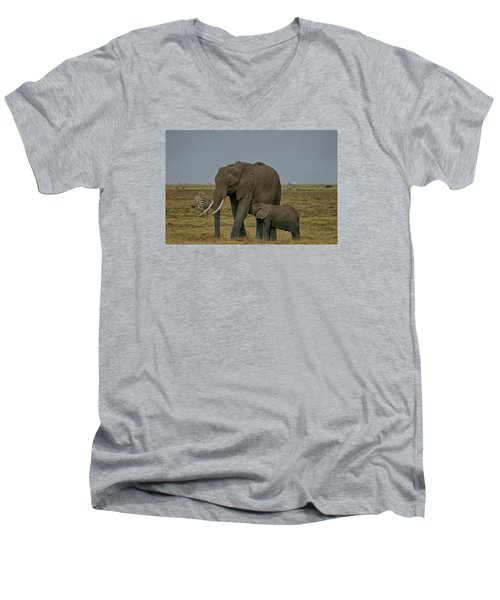 Men's V-Neck T-Shirt featuring the photograph Feeding Time by Gary Hall