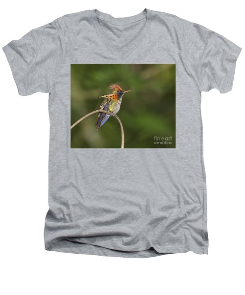Feisty Little Fellow..  Men's V-Neck T-Shirt