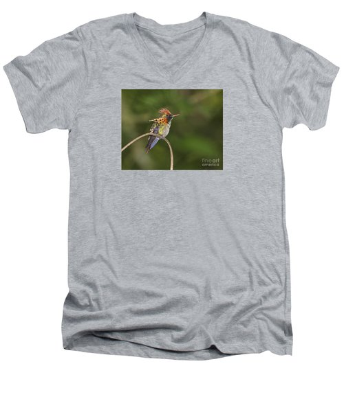 Feisty Little Fellow..  Men's V-Neck T-Shirt