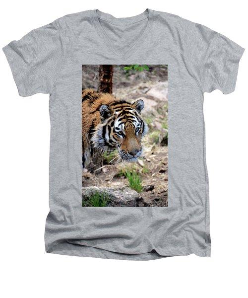 Feline Focus Men's V-Neck T-Shirt