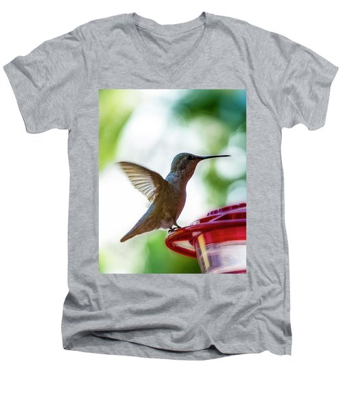 Men's V-Neck T-Shirt featuring the photograph Female Anna's Hummingbird V24 by Mark Myhaver