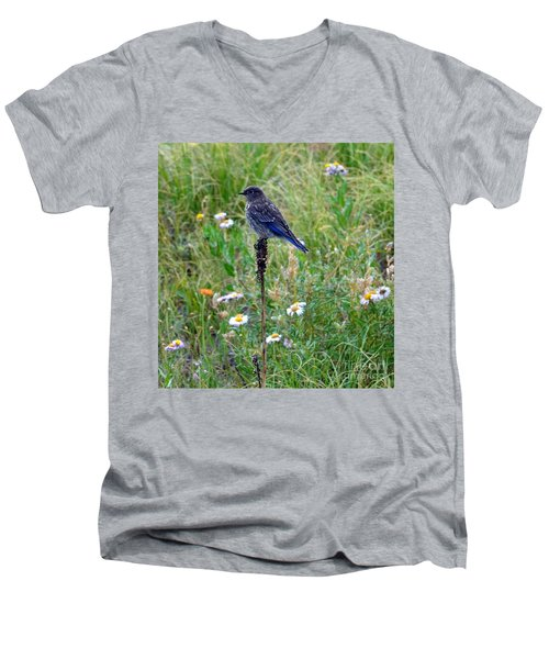 Female Bluebird Men's V-Neck T-Shirt