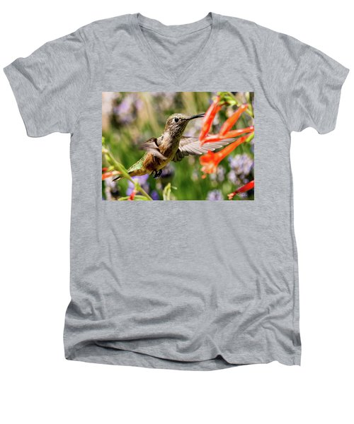 Female Broadtail Humingbird Men's V-Neck T-Shirt