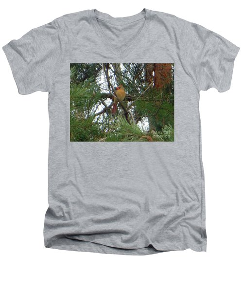 Men's V-Neck T-Shirt featuring the photograph Female Northern Cardinal by Rockin Docks Deluxephotos