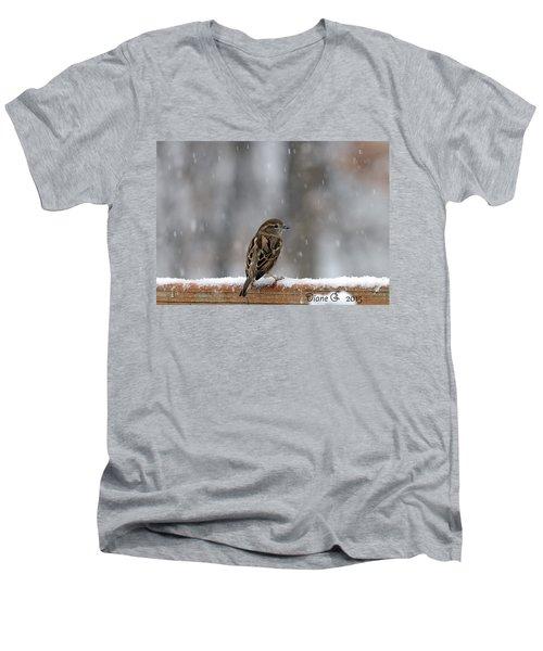 Female Sparrow In Snow Men's V-Neck T-Shirt by Diane Giurco