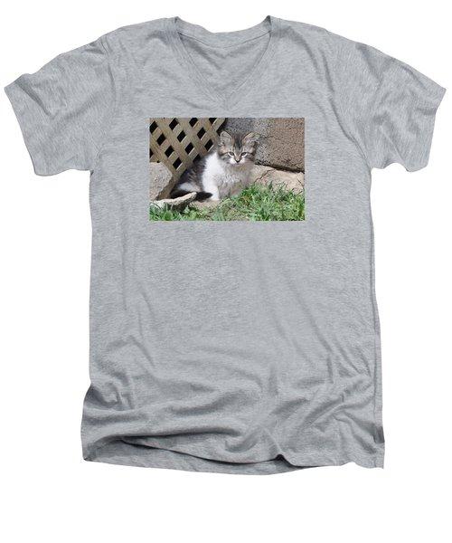 Ferocia Grumpy Men's V-Neck T-Shirt