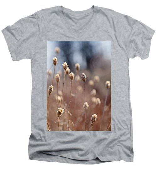 Field Of Dried Flowers In Earth Tones Men's V-Neck T-Shirt