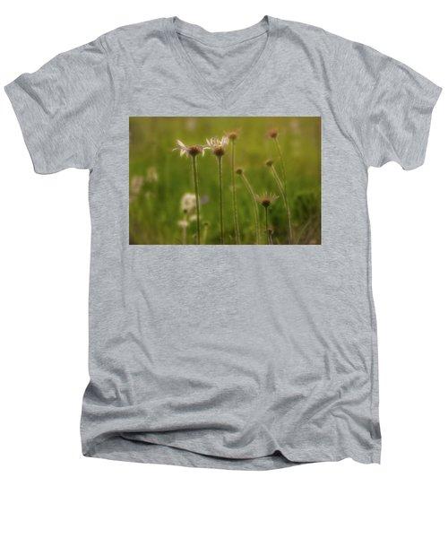 Field Of Flowers 2 Men's V-Neck T-Shirt