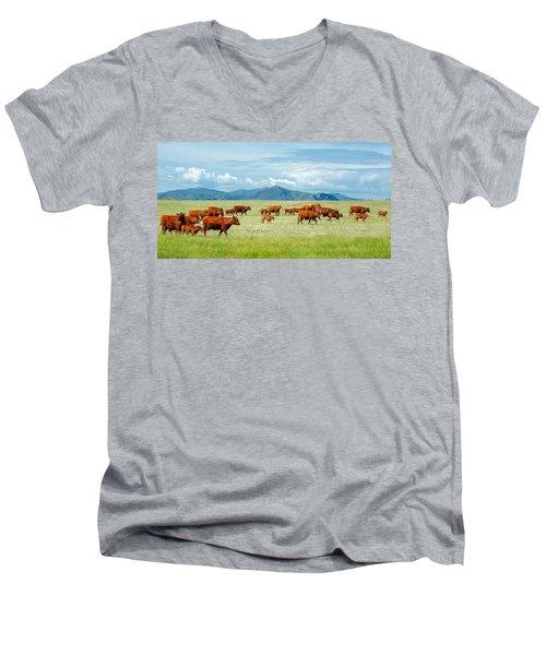 Field Of Reds Men's V-Neck T-Shirt