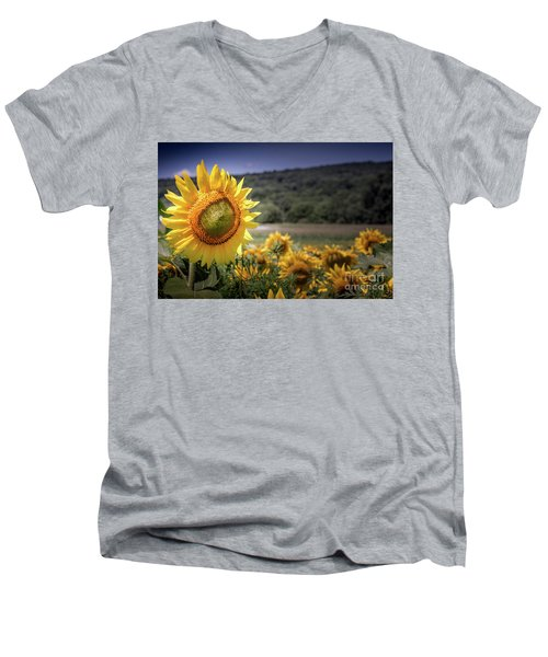 Field Of Sunflowers Men's V-Neck T-Shirt
