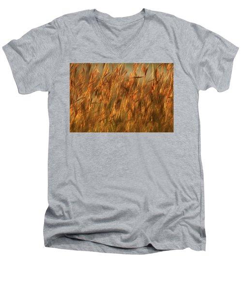 Fields Of Golden Grains Men's V-Neck T-Shirt