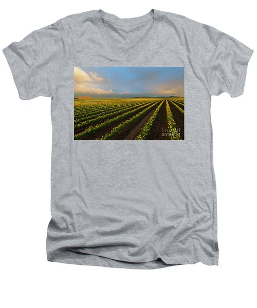 Men's V-Neck T-Shirt featuring the photograph Fields Of Yellow by Mike Dawson