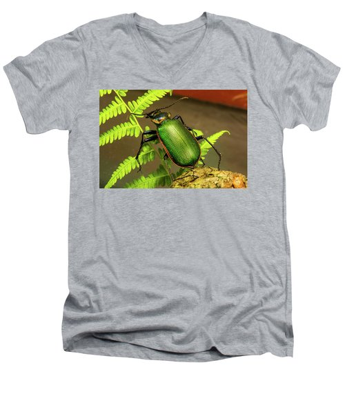 Fiery Hunter Carabid Men's V-Neck T-Shirt