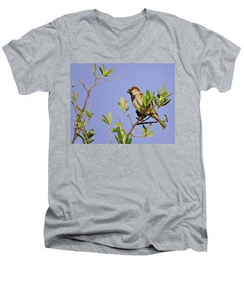 Finch Men's V-Neck T-Shirt