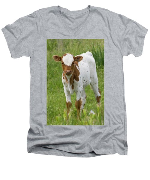 Fine Looking Longhorn Calf Men's V-Neck T-Shirt