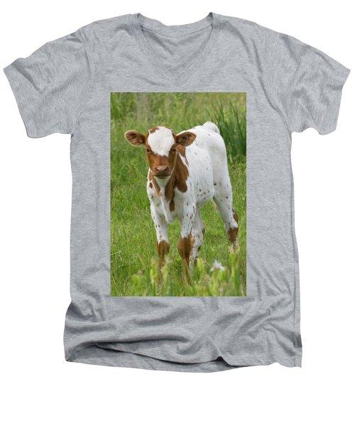 Fine Looking Longhorn Calf Men's V-Neck T-Shirt