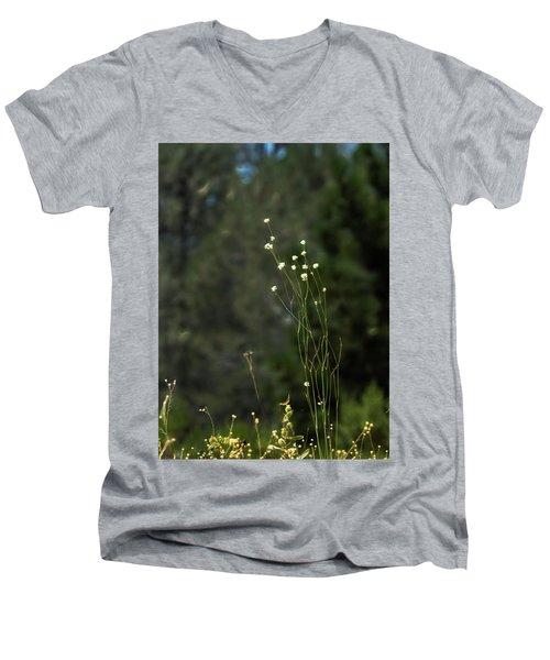 Finnon Wildflowers Men's V-Neck T-Shirt