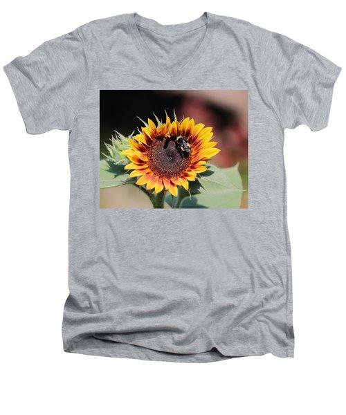 Firecracker Men's V-Neck T-Shirt