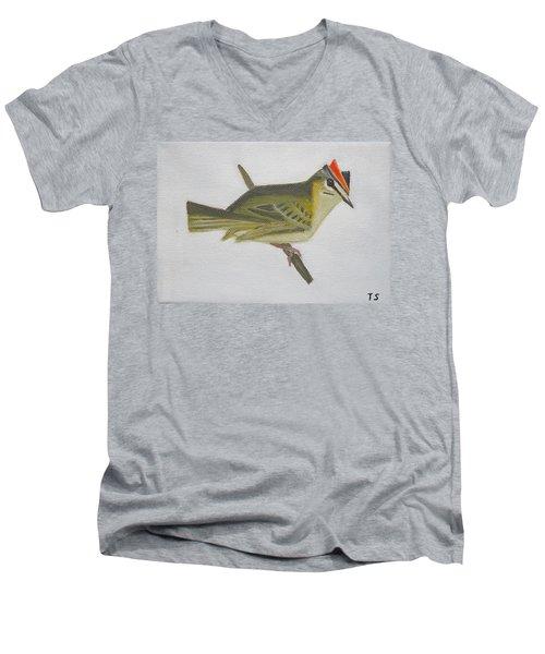 Firecrest Men's V-Neck T-Shirt