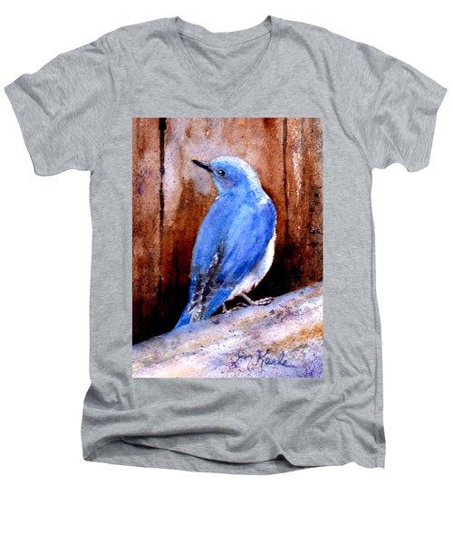 Firehole Bridge Bluebird - Male Men's V-Neck T-Shirt